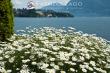 Lago Maggiore (Italy)