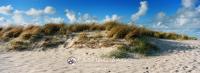Dunes at sunset, Ellenbogen