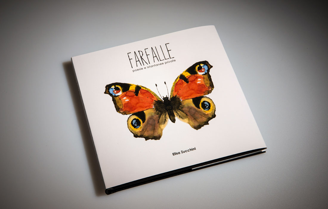 Elisa Zucchini - Farfalle